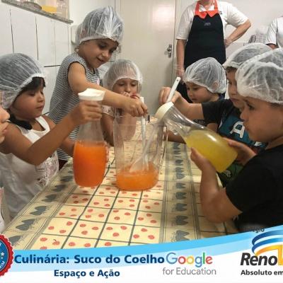suco_do_coelho (33)