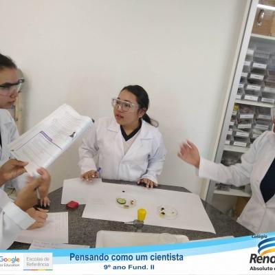 Cientistas (12 de 13)