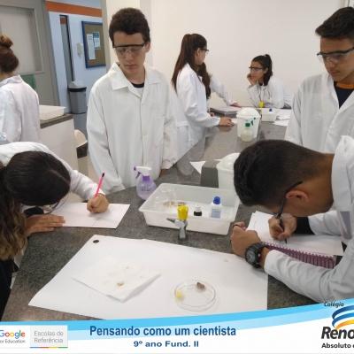 Cientistas (4 de 13)