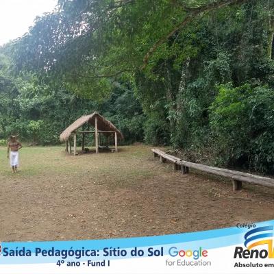 SITIO_4ANOS (47)