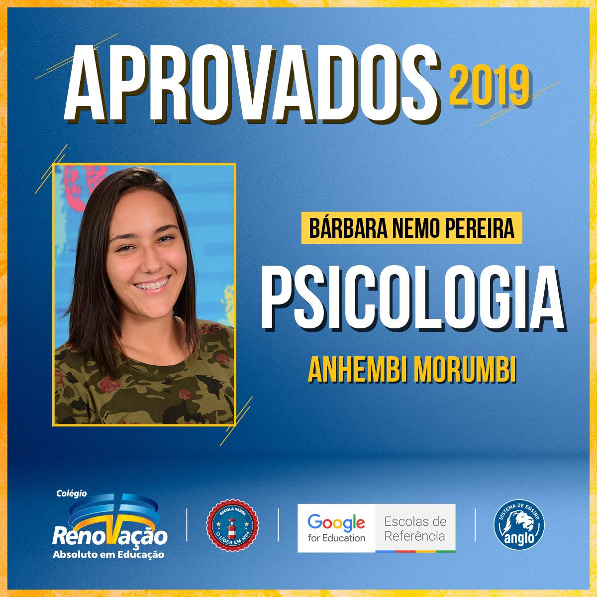 16992_Desdobramentos_Post_BannerAprovados2019_ColegioRenovacaoSP4