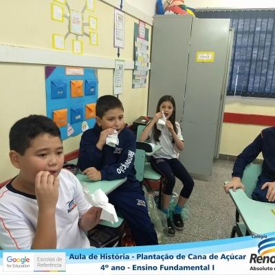 CANA_AÇUCAR_4ANOS (14)