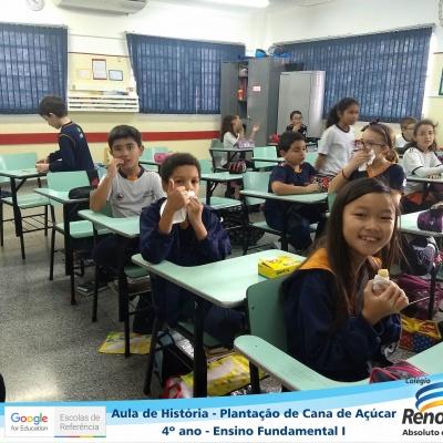CANA_AÇUCAR_4ANOS (16)