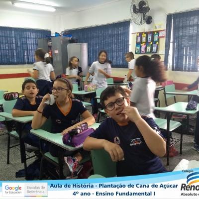 CANA_AÇUCAR_4ANOS (17)