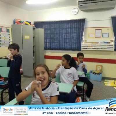 CANA_AÇUCAR_4ANOS (18)