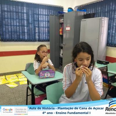 CANA_AÇUCAR_4ANOS (20)