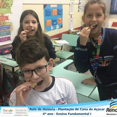 CANA_AÇUCAR_4ANOS (29)