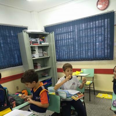 CANA_AÇUCAR_4ANOS (3)