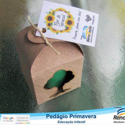 PEDAGIO_PRIMAVERA (1)