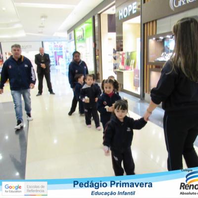 PEDAGIO_PRIMAVERA (10)