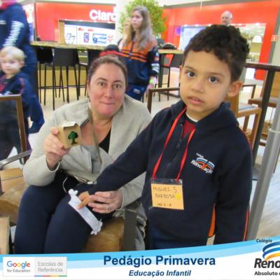 PEDAGIO_PRIMAVERA (104)