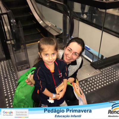 PEDAGIO_PRIMAVERA (120)