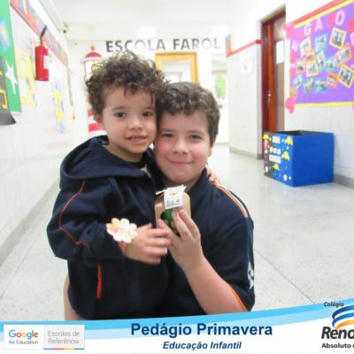 PEDAGIO_PRIMAVERA (140)