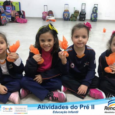 ATIVIDADE_PRE_II_MANHÃ (11)